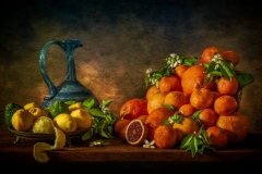 Still Life with Citrus Fruits