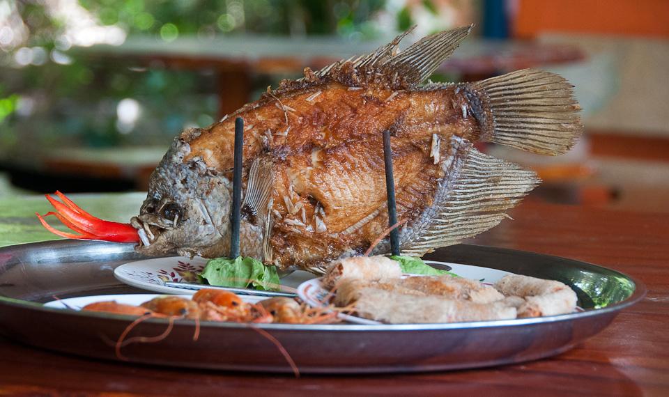 Lunch Along the Mekong River, Vietnam