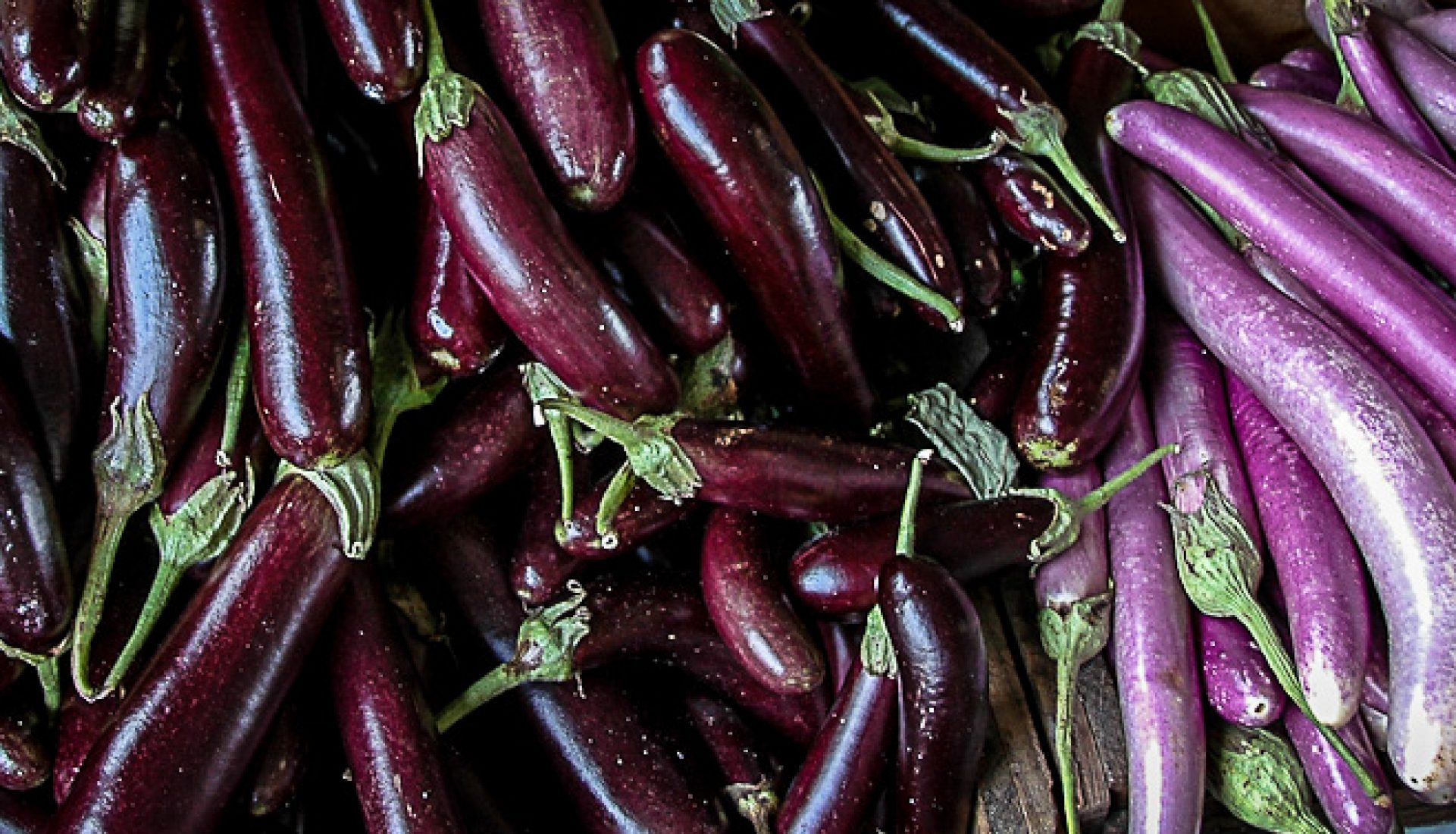 Weekly Photo Challenge ~ Purple ~ Veggies