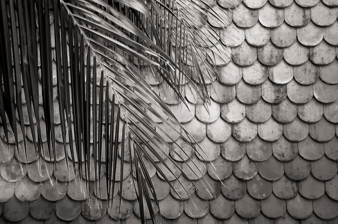 Tile Roof - Phenom Phen, Cambodia