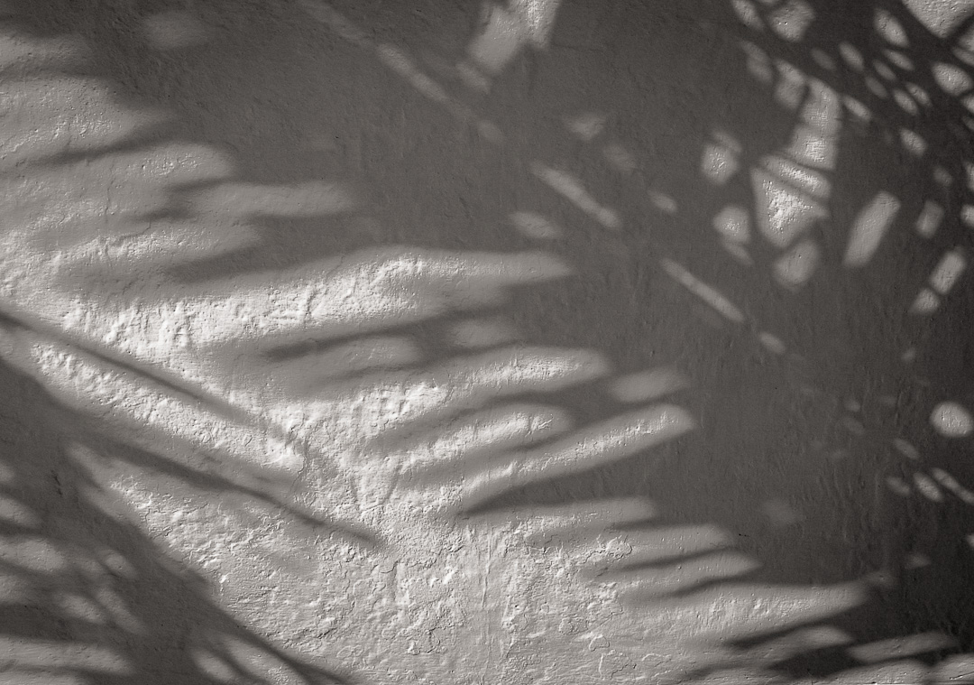 Stucco wall palm frond shadow - Boca Grande, FL