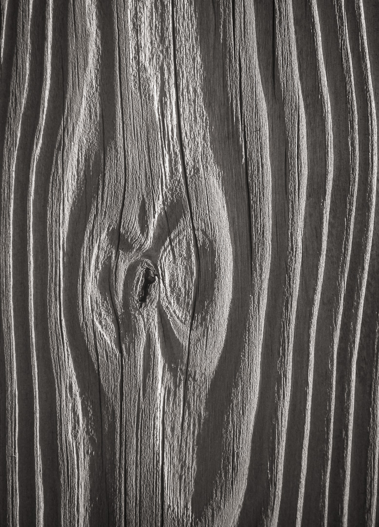 Weathered wood - Cape Hatteras, NC