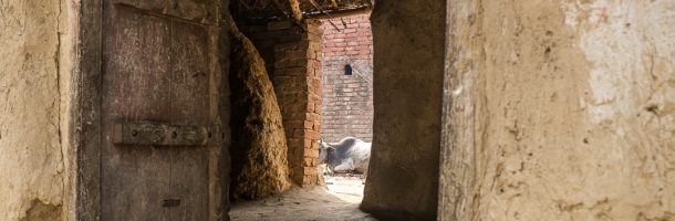 Framed – Images from India