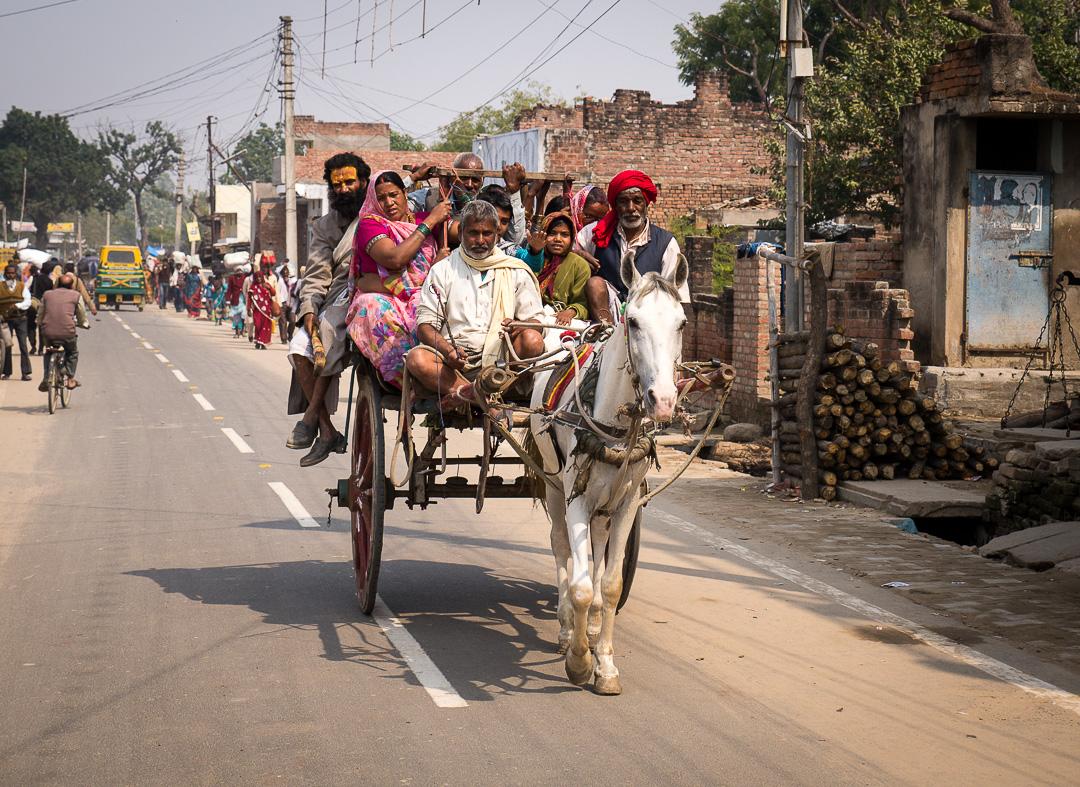 Pilgrims returning home