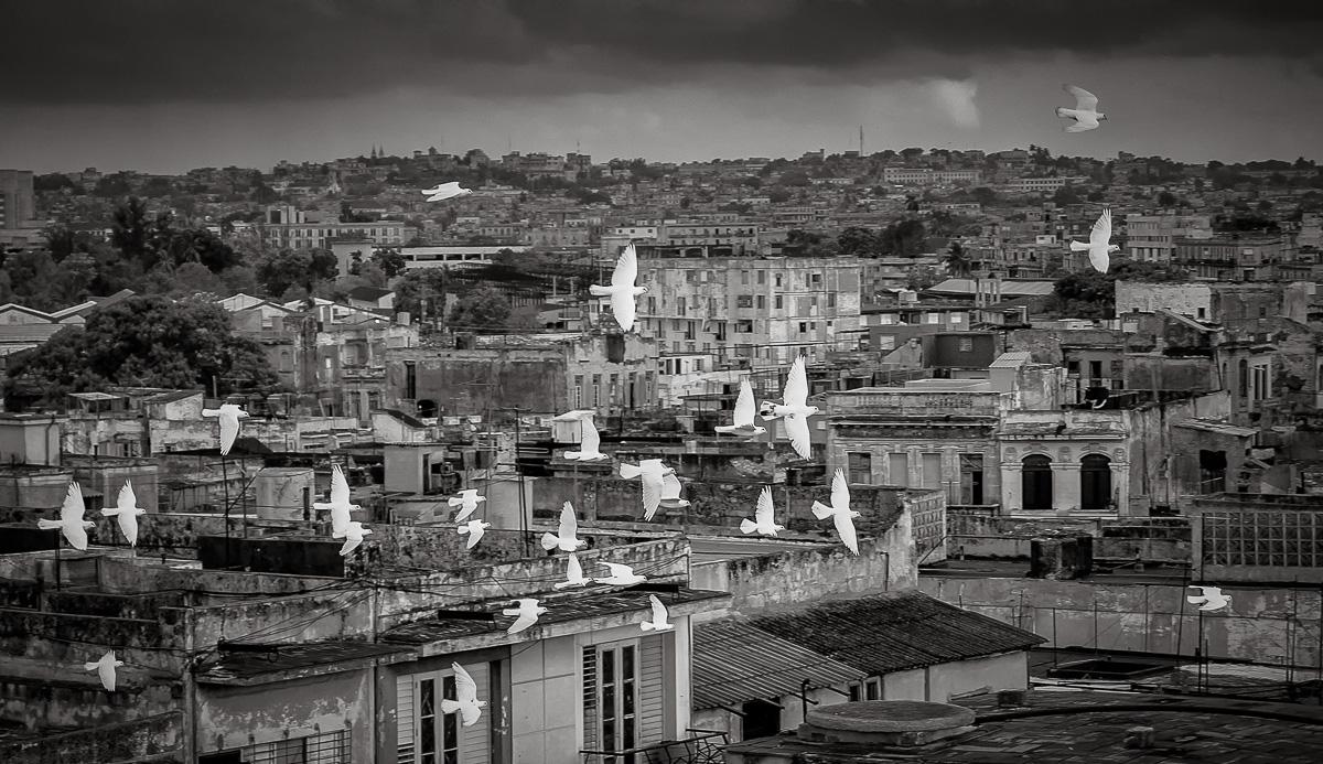 A Fleeting Moment over Havana
