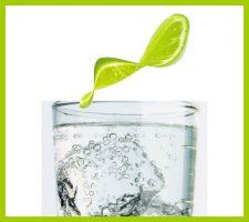 … a Twist of Lime