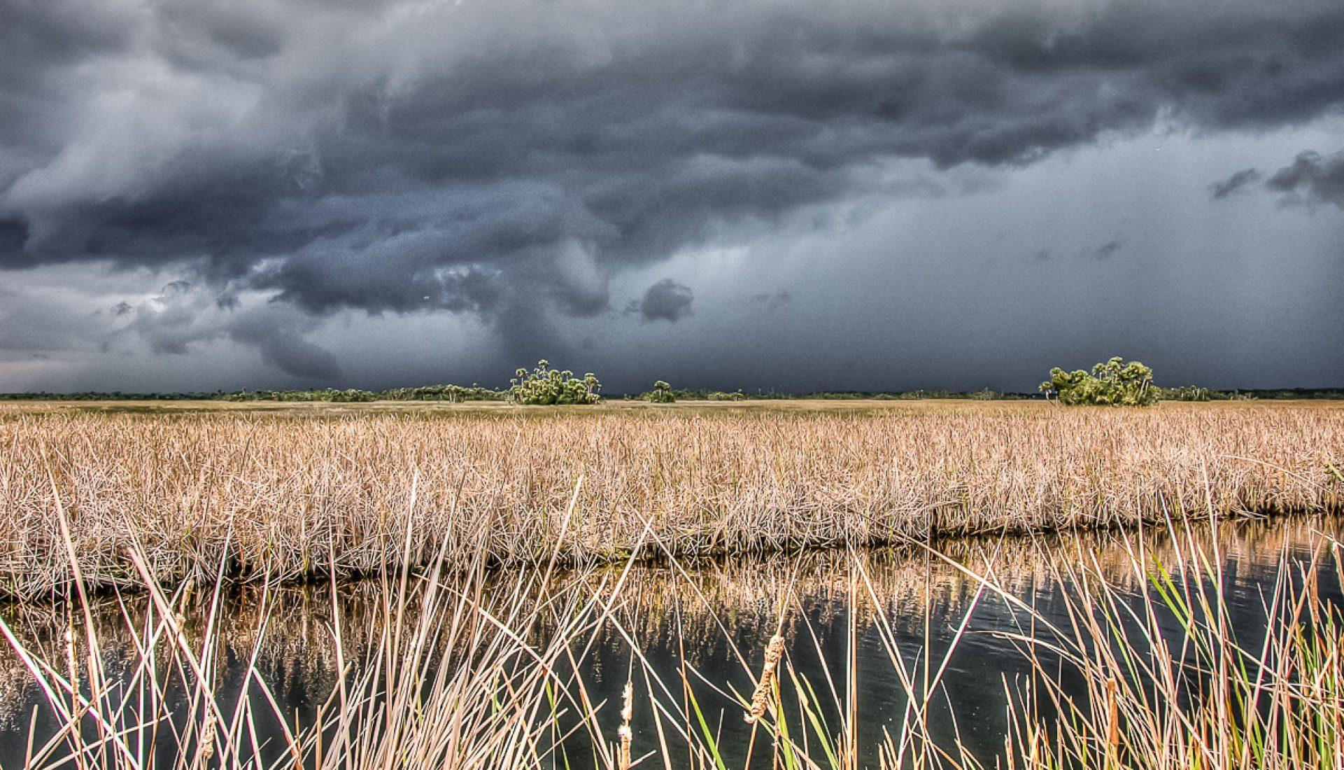 Summer Thunder Over Florida's Everglades