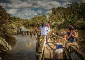 Fishing in Bayou Country