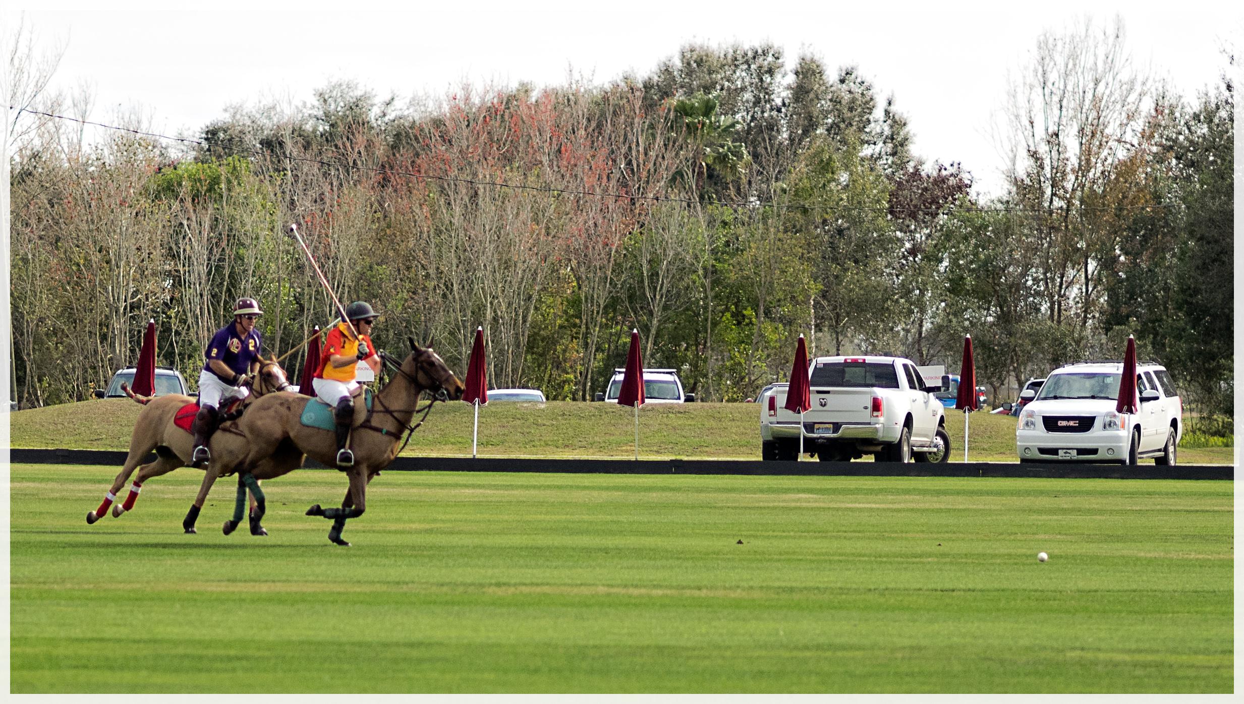 lakewood-ranch-polo