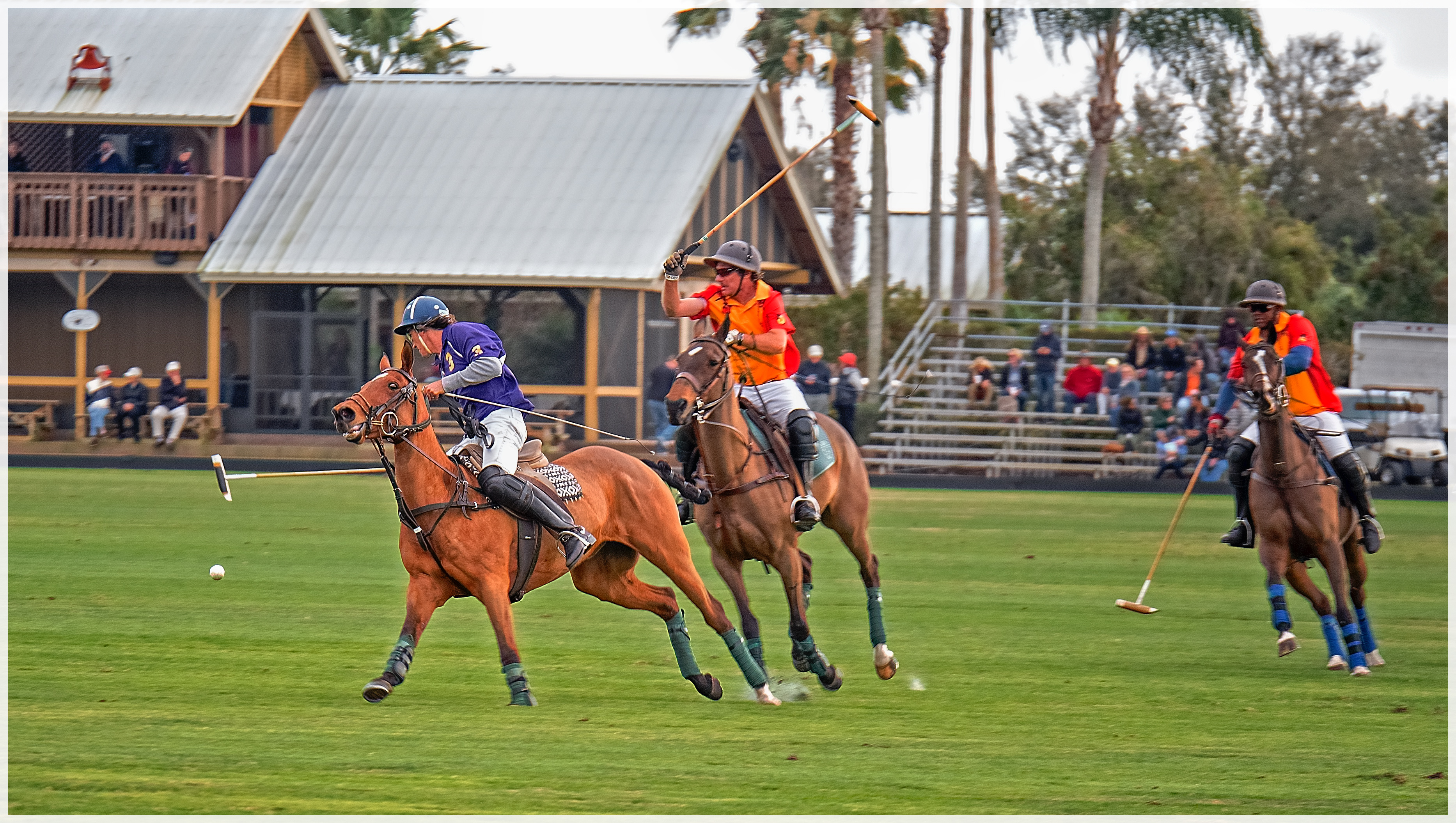 Photoessay: The Sport of Kings