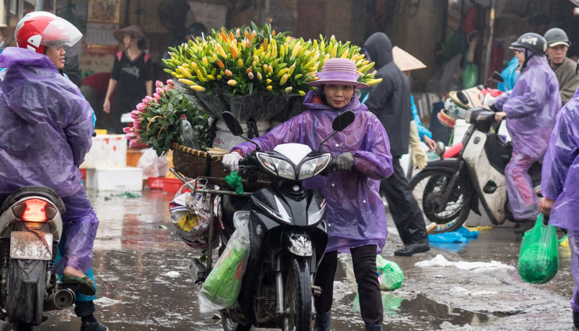Morning Market, Hanoi, Vietnam