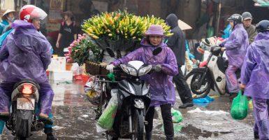 Morning Market, Hanoi, Vietnam