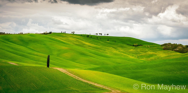 Tuscany's Idyllic Landscapes