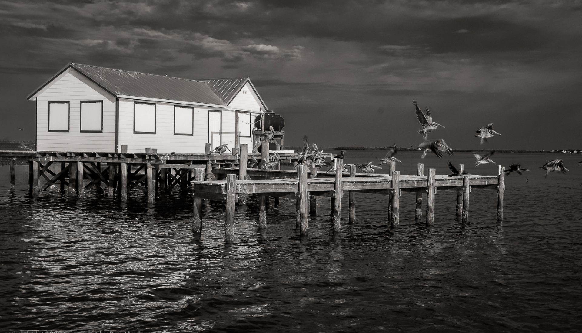 The Fish Shacks: A fine art folio