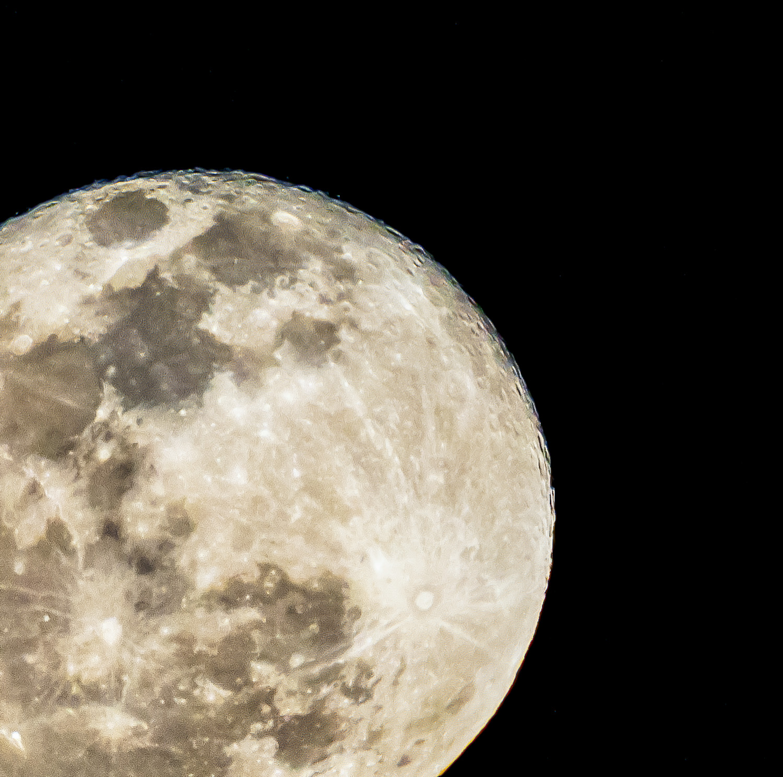 Wolf Moon – January 2019