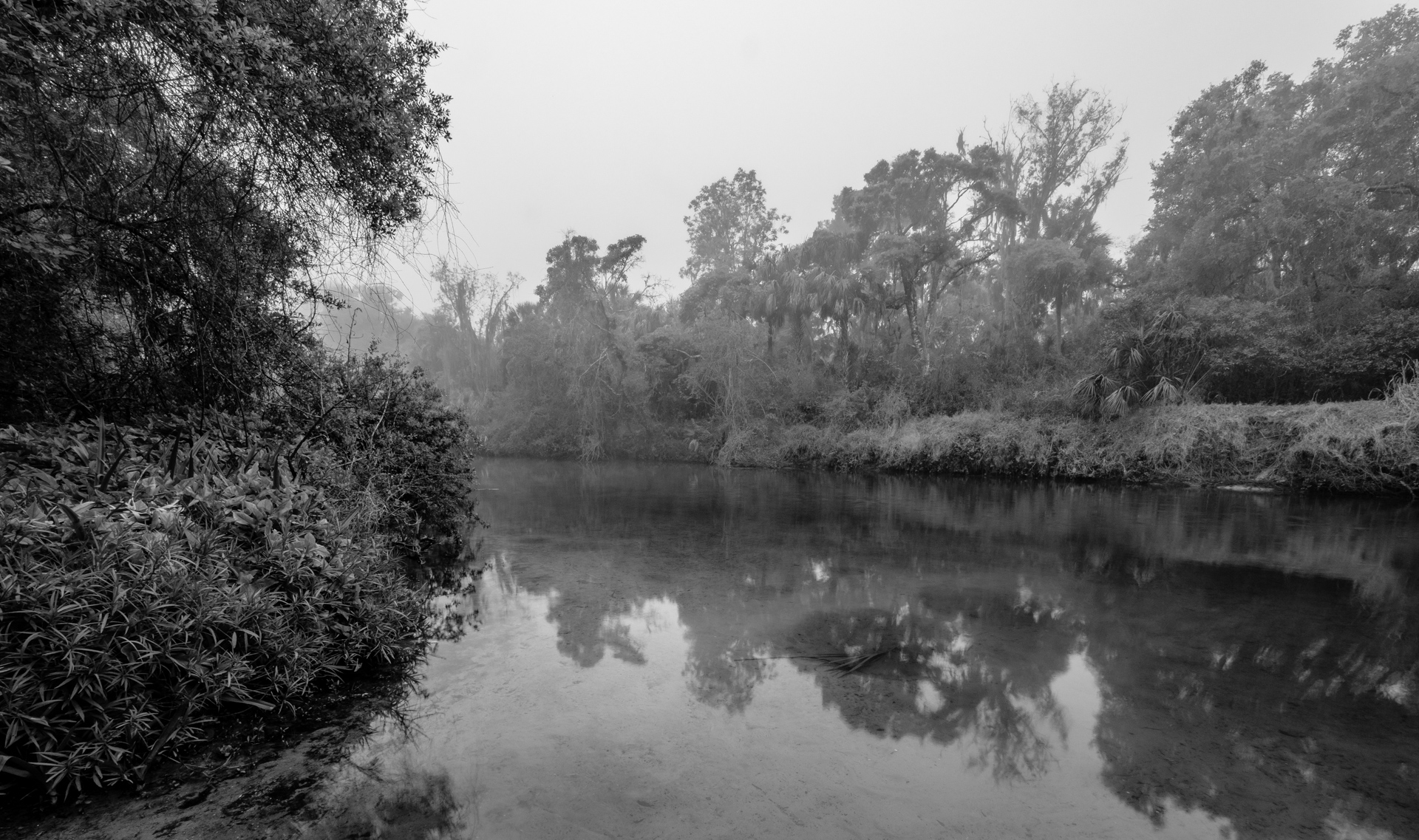 Manatee River with Fog - Up the Lazy River
