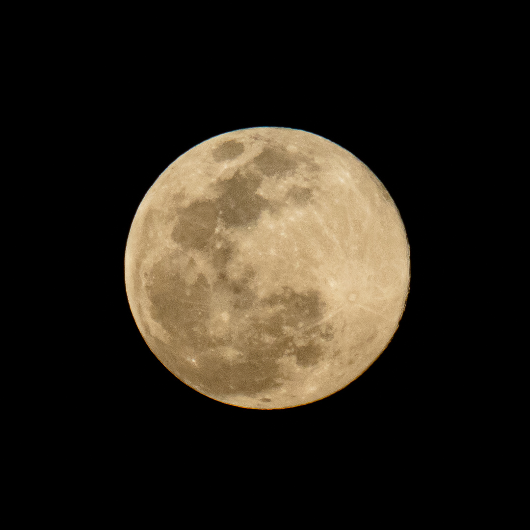 """One of a Million 