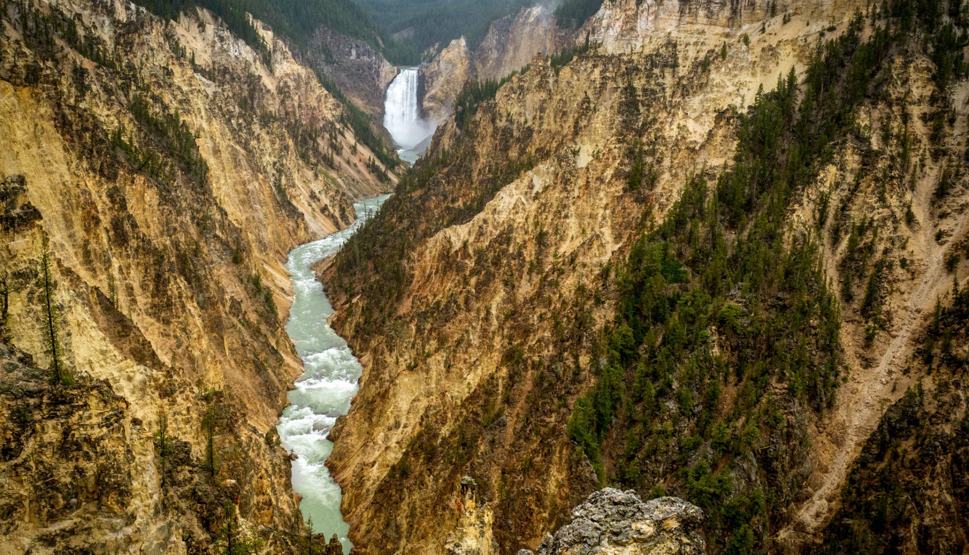 Yellowstone River | Yellowstone NP