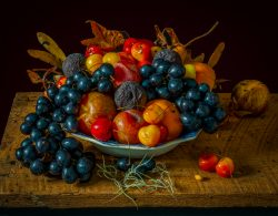 Newly Updated Still Life Gallery