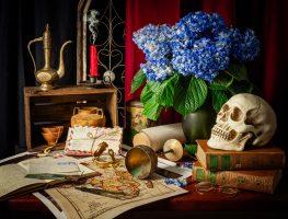 Vanitas – Wanderlust | a Still Life