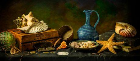 """Shells"" | Still Life Photography"