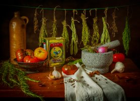 Still Life with Herbs