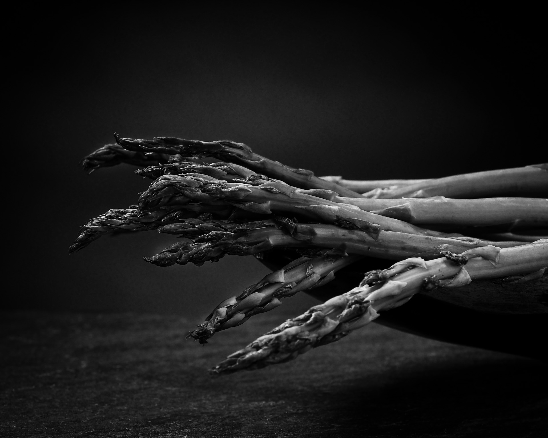 Asparagus Bunch-Monochrome