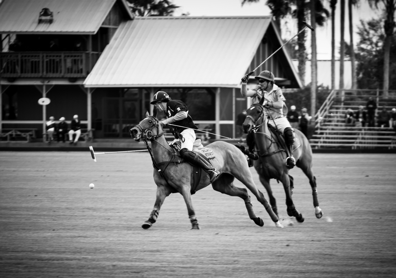 Polo Match | Monochrome Monday