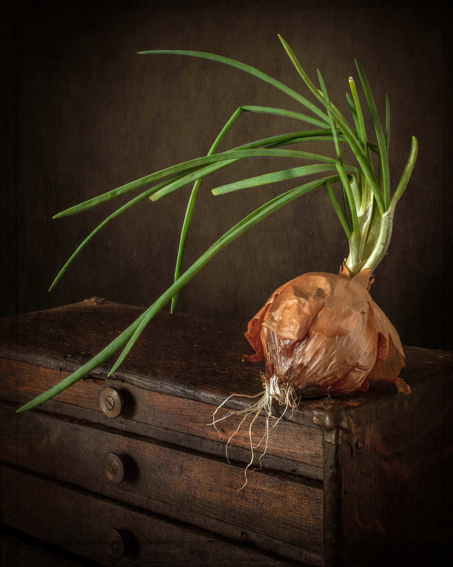 Wooden Chest and Onion-